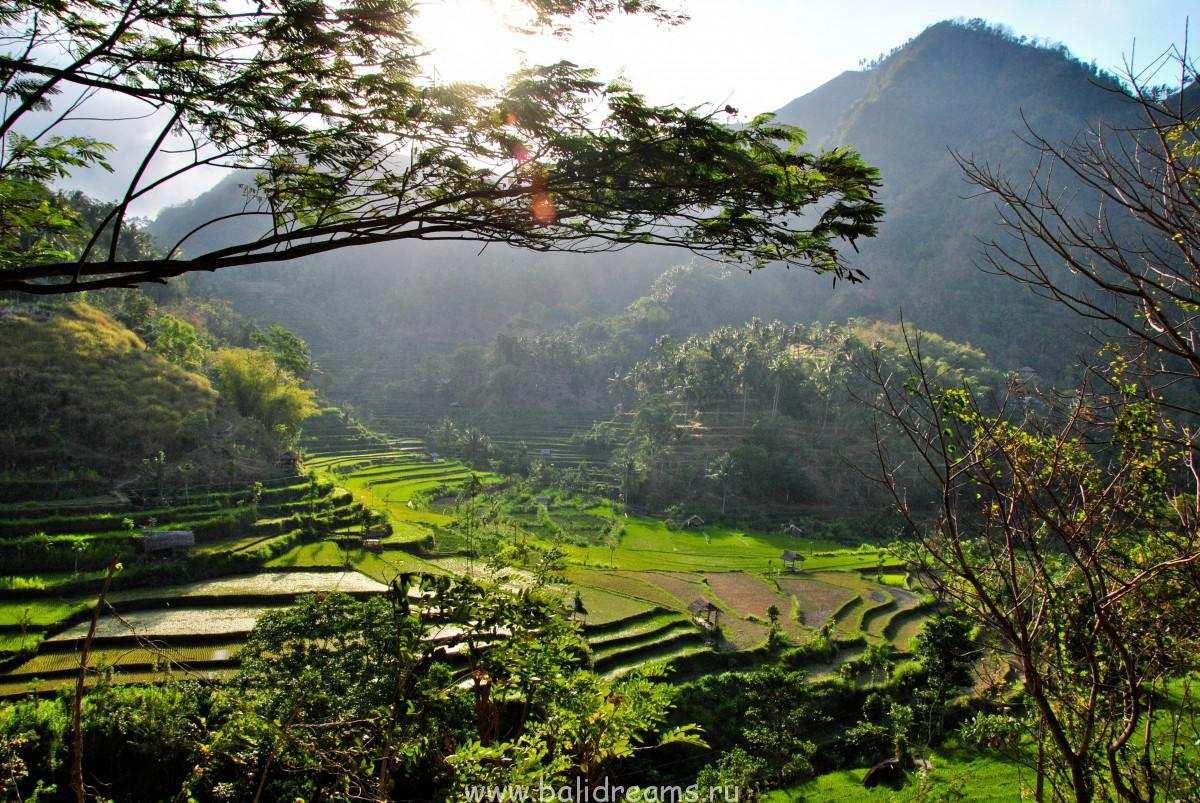 Дорога на север Бали