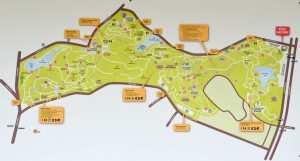 Карта Ботанического парка в Сингапуре (Botanic Garden Singapore)