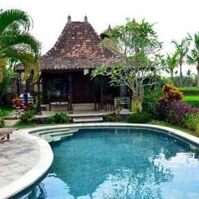 Аренда виллы на Бали, Вилла среди рисовых террас