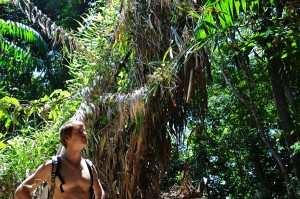 Трекинг через остров Сапи
