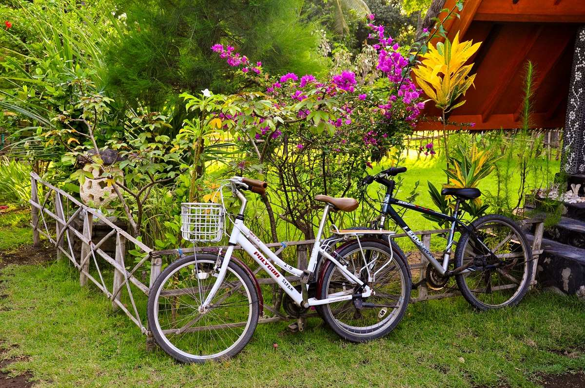 Прогулки на велосипедах. Острова Гили