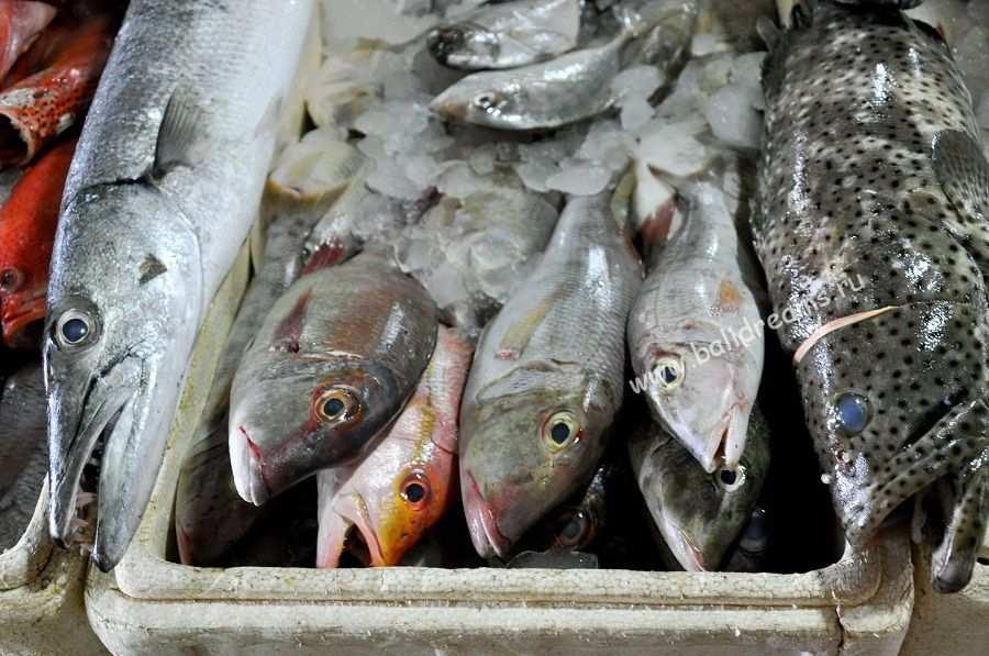 Процесс выбора рыбы на рыбном рынке Джимбарана