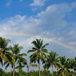 радуга в районе Бедугул. Бали