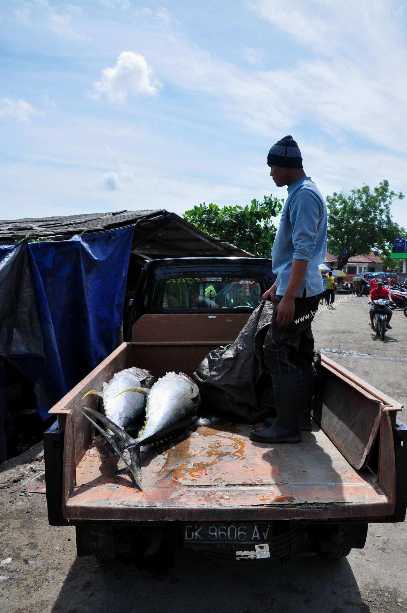 Улов на рыбном рынке Джимбарана