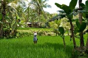 без дождей на Бали