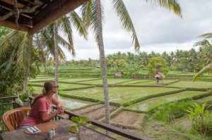 Ресторанчик с видом на рисовые террассы