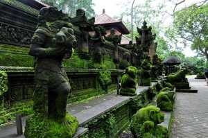 Прогулки по Monkey Forest. Бали 2014-2015