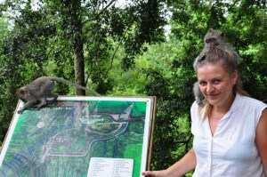 Карта парка Monkey Forest и обезьянки. Бали 2014-2015