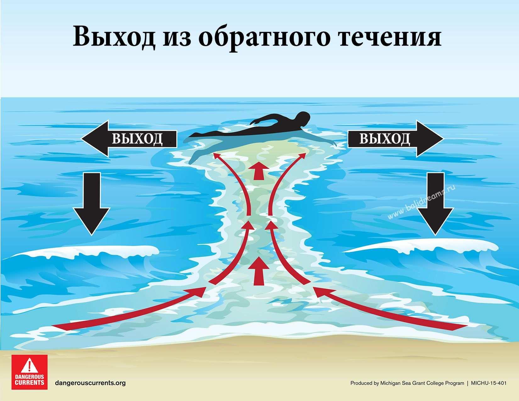 Обратное течение выживание в океане