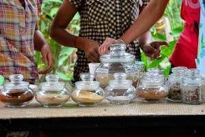 Дегустация кофе лювак Бали