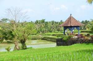 Вилла Убуд, Бали