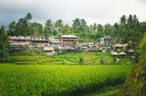 Окрестности Убуда, остров Бали