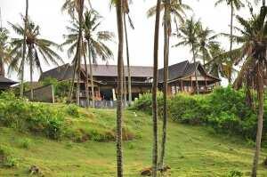 пальмы на пляже Балиан, остров Бали