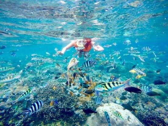 Сноркглинг и дайвинг на острове Бали 2017