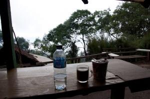 Кофе лювак на острове Ява. Настоящий ли?)